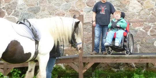 Rollstuhlfahrer vor Reitpferd